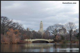New York Winter in Cloud