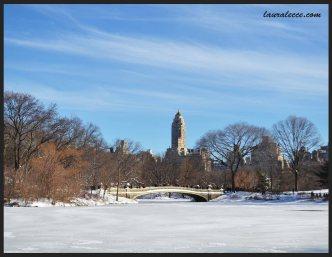New York Winter in Snow